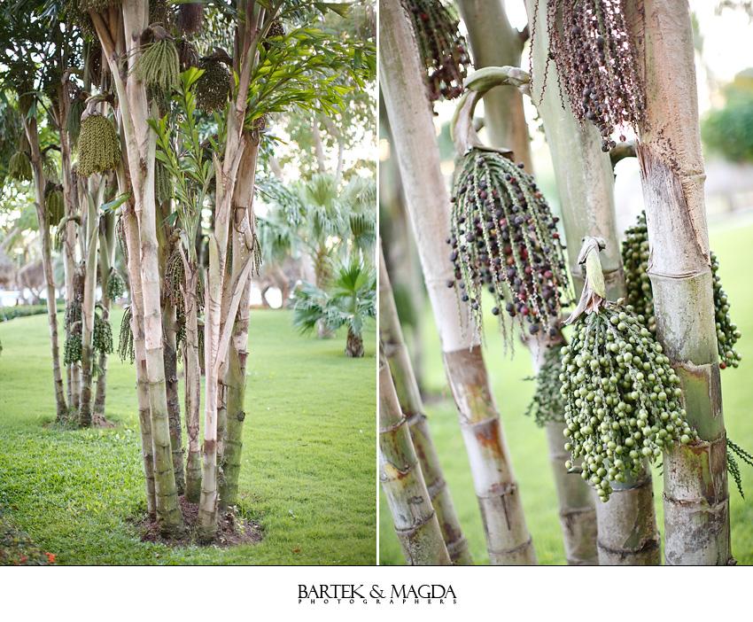 iberostar_hacienda_dominicus_bayahibe_wedding_004.jpg