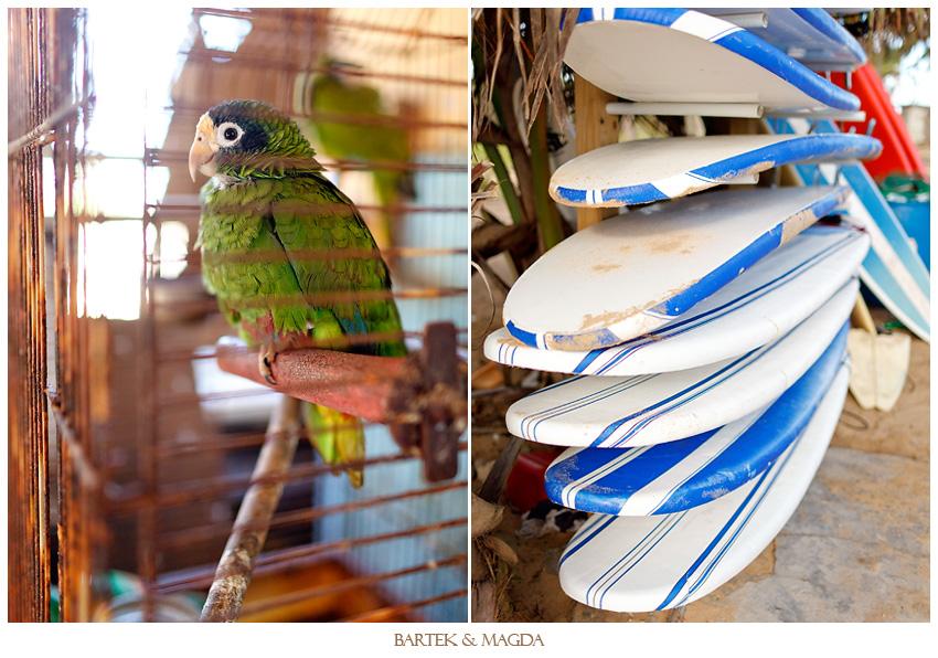 wedding surfing punta cana macao beach