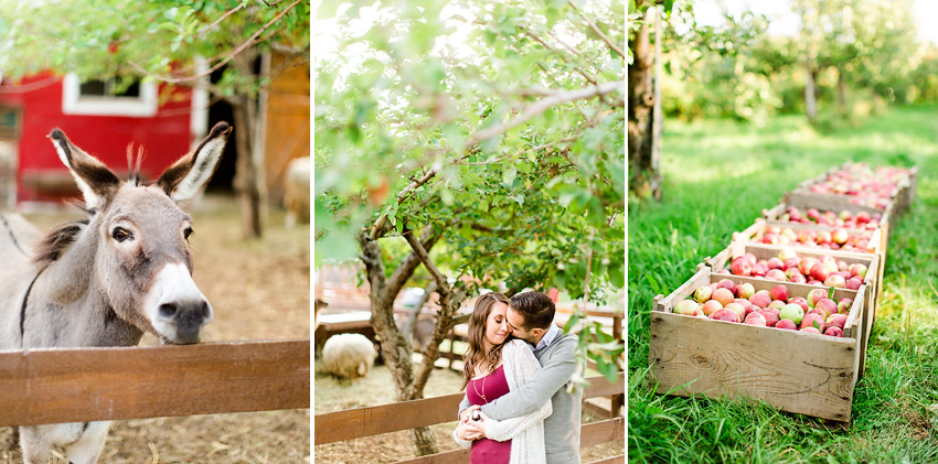 apple_orchard_engagement_003