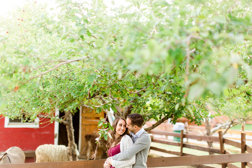 apple_orchard_engagement_006