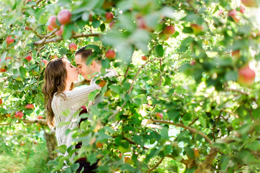 apple_orchard_engagement_011