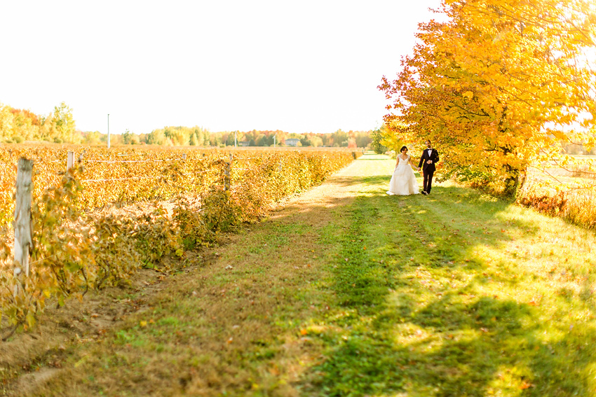 vineyard_wedding_montreal_026