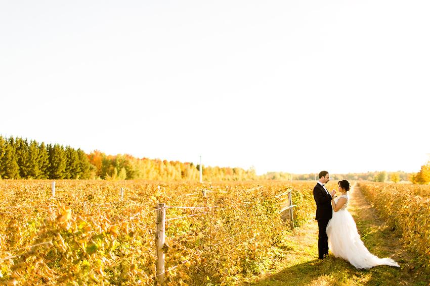 vineyard_wedding_montreal_032